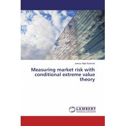 Measuring market risk with conditional extreme value theory