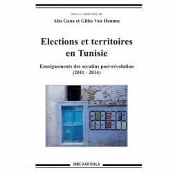 Elections et territoires en Tunisie, Enseignements des scrutins post-révolution (2011-2014)